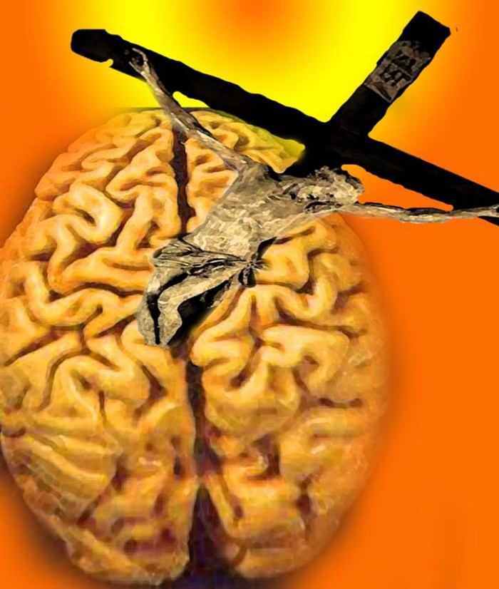 Brain cross health
